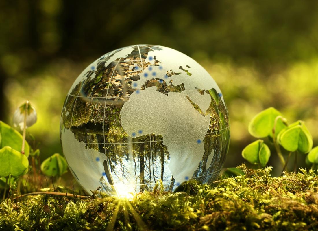 Umwelt1.1